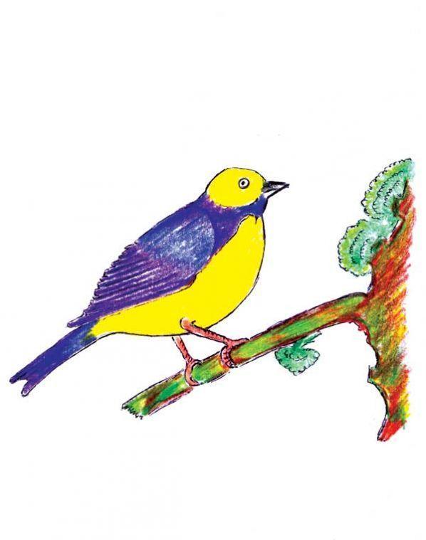 Poesía Madre Tierra Arawi Pachamama Quechua Opinión