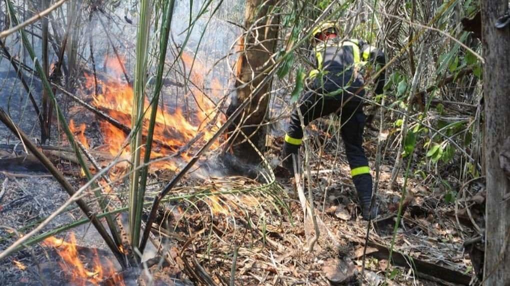 Un bombero trabaja para aplacar las llamas en la Chiquitanía. Archivo