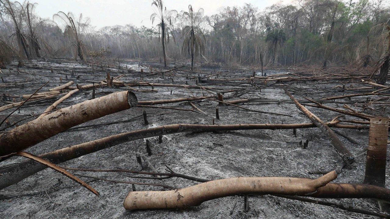 Una de las zonas afectadas por las quemas en la Chiquitanía. EFE