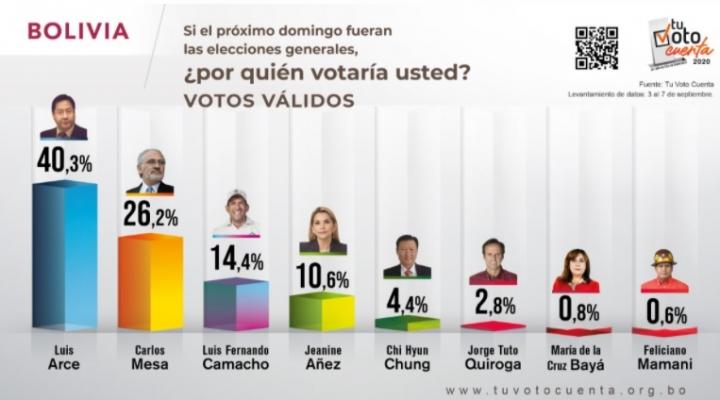 Según encuesta Tu Voto Cuenta, Luis Arce gana en primera vuelta - El País -  Opinión Bolivia